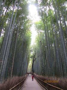 Japan trip 033