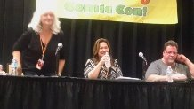 Tampa Bay Comic Con 2015 Panel 1