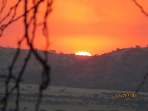 Fiery sunset over the Serengeti.